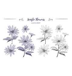 Hand drawn flowers sketch chamomiles daisies vector