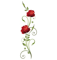 Rose love vector image vector image