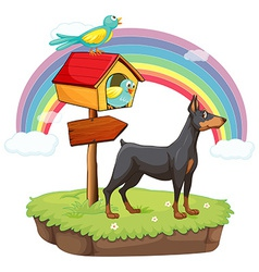 An island with animals and a wooden arrow vector image vector image
