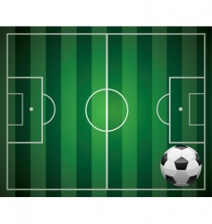 soccer ball and the field vector image vector image