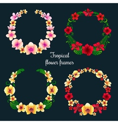 Tropical flower frames and tags set vector