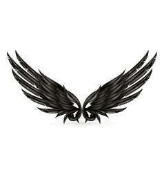 Wings black vector image vector image