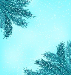 Winter natural background with fir branches vector