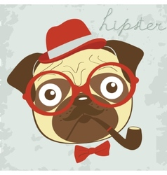 Pug smoking pipe vector image