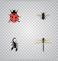 Realistic ladybird damselfly poisonous and other vector