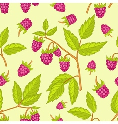 Seamless raspberries pattern vector image vector image