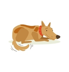 Smiling brown pet dog laying animal emotion vector