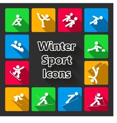 Winter sports iconset vector