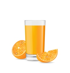 Orange cocktail with slice vector