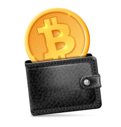 bitcoin in the wallet vector image vector image