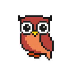 cute bird animal pixelated owl - isolated vector image