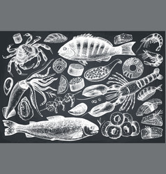 Hand drawn seafood set vector
