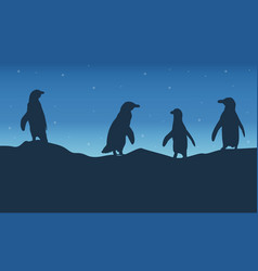 Penguin lines on hill at night landscape vector