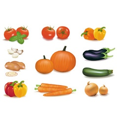 Group of vegetables with pumpkins vector