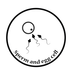 Sperm and egg cell icon vector