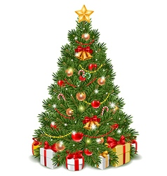 Fir tree isolated vector image vector image