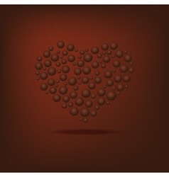 Heart of the bubbles vector image vector image