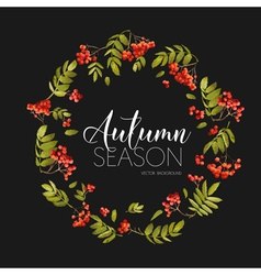 Autumn rowan berry background floral banner design vector