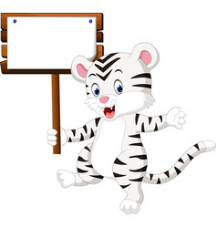 Cute white tiger cartoon vector