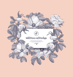 Floral card wild roses and rosehips hand drawn vector