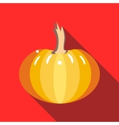 Pumpkin icon in flat style vector image vector image
