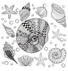 Set sea shells zentangle shelsl for adult vector