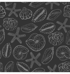 Seamless pattern with shells on dark background vector