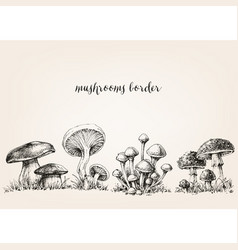 Cute mushrooms border hand drawn collection vector