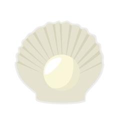 Sea shell mollusks vector