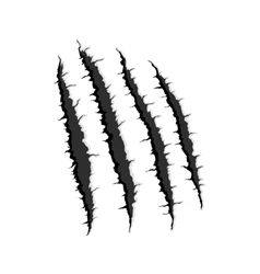 Four vertical trace of monster claw vector