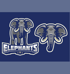 elephant mascot set vector image