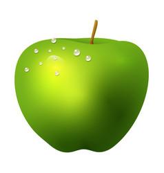 green apple fruit realistic 3d healthy vegetarian vector image vector image