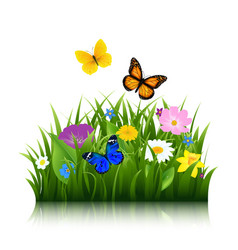 summer flowers with butterfly vector image