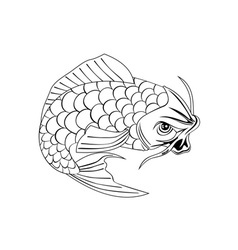 Koi carp fish jumping line drawing vector