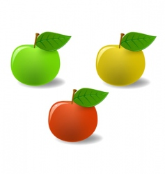 Set of colored apples vector