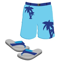Shorts and slippers vector
