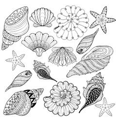 set Shells zentangle seashells for adult vector image