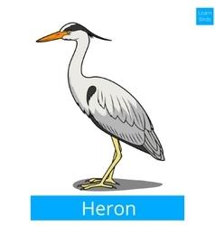 Heron learn birds educational game vector