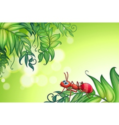 An empty stationery with an ant above the leaves vector image