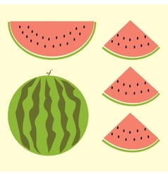 Fet of watermelon with sign flat style vector
