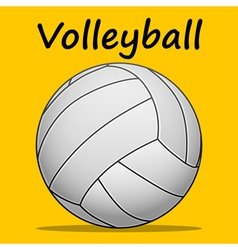 Volleyball-team sport vector