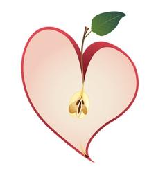 apple as heart vector image
