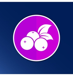 Blueberry farm juicy logo symbol vector