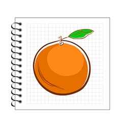 Hand drawn orange on spiral notepad paper vector
