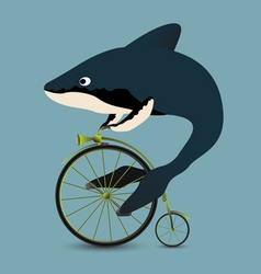 Whale on a bicycle vector image