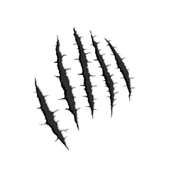 Five vertical trace of monster claw vector image
