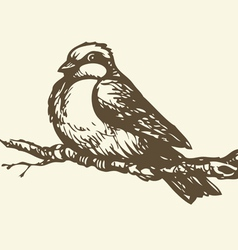 Small titmouse on a branch vector image vector image