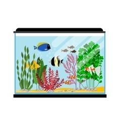 Cartoon fishes in aquarium saltwater or vector