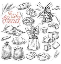 set of fresh bread vector image