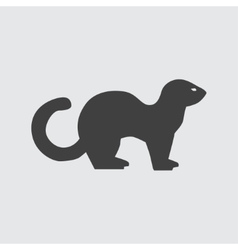 Ferret icon vector